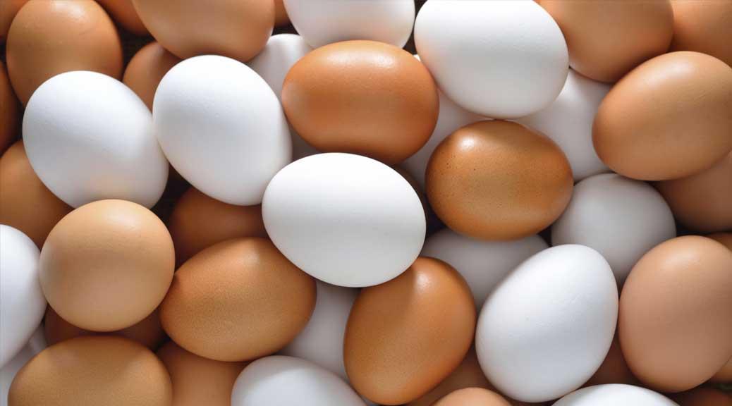 La verità sulle uova di cui nessuno parla