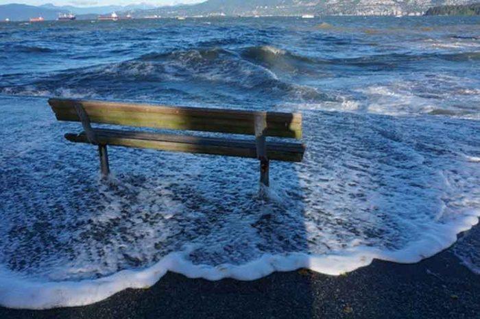 M5S: 'Così il cambiamento climatico ferisce a morte i nostri mari'