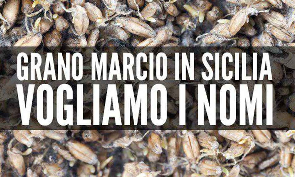 """efa729709c """"Non è la prima volta che viene sequestrato grano mal conservato in Sicilia.  Le 937 tonnellate trovate nel deposito di Catania dimostrano, per  l'ennesima ..."""