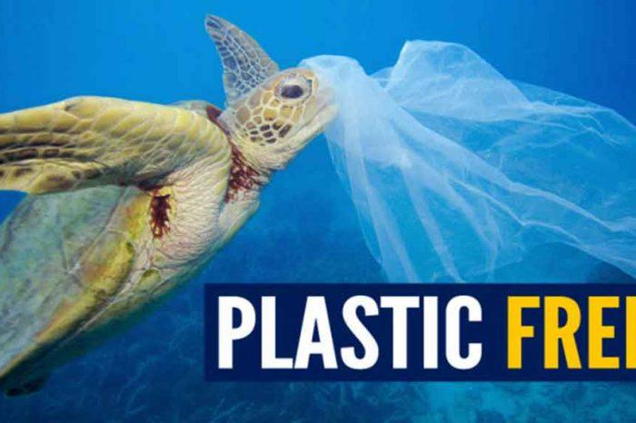 M5S: 'In attesa che si riduca la produzione di plastica, con il disegno di legge 'Salvamare' la guerra alla plastica non ha più confini'